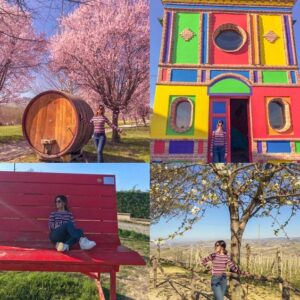 [:it]Trip out of town near Turin? A fun tour of the Langhe[:in]TRIP OUT OF TOWN NEAR TURIN? A FUN TOUR OF THE LANGHE[:]